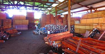 Surinamewood.com distribution point Paramaribo