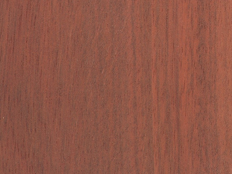 Purchase Bloodwood from Suriname direct!