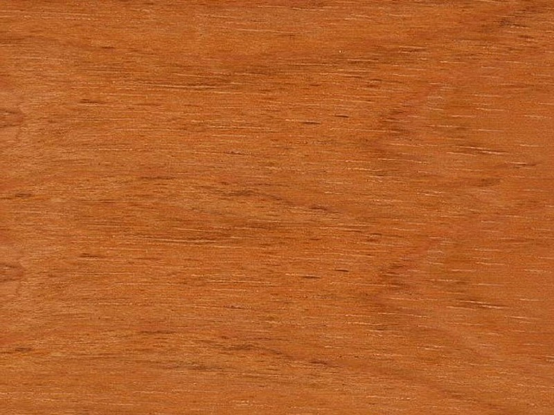 Jatoba-wood-from-suriname