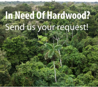 Request for Informations Suriname Hardwood
